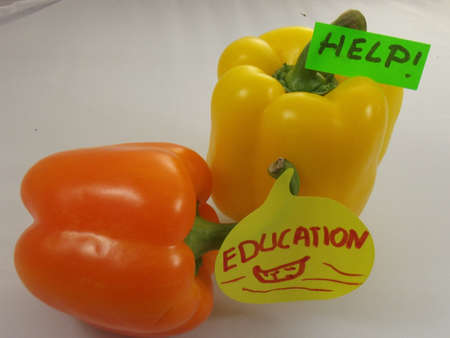 word help education Stock Photo - 16936433