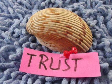 word trust Stock Photo - 17224612