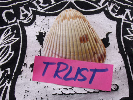 word trust Stock Photo - 17235545
