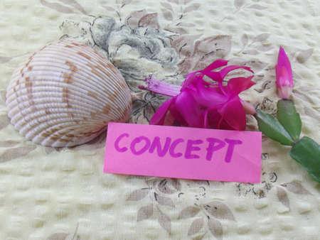 connectedness: word concept Stock Photo