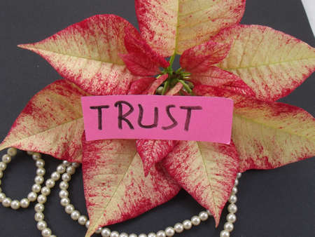 word trust Stock Photo - 17341785