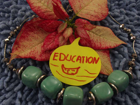 word education Stock Photo - 17359941
