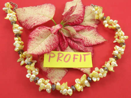 word profit on red background photo