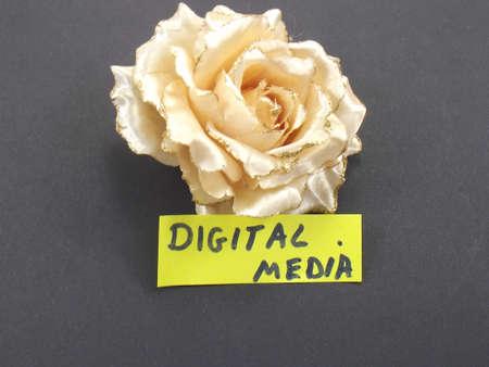 media distribution: word digital media