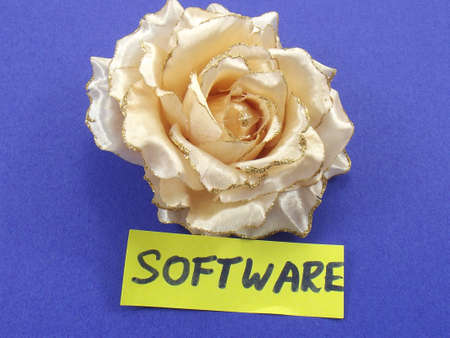 middleware: word software Stock Photo