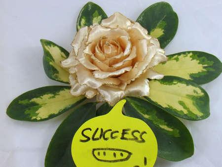 word success photo