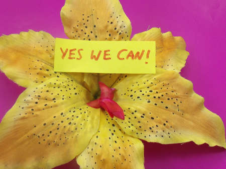 yes we can: word yes we can