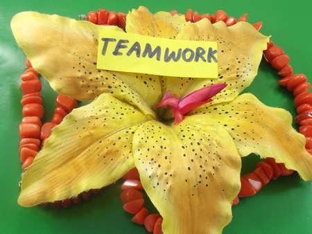 word teamwork photo