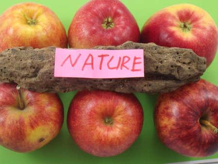 WORD NATURE  Stock Photo - 18224931