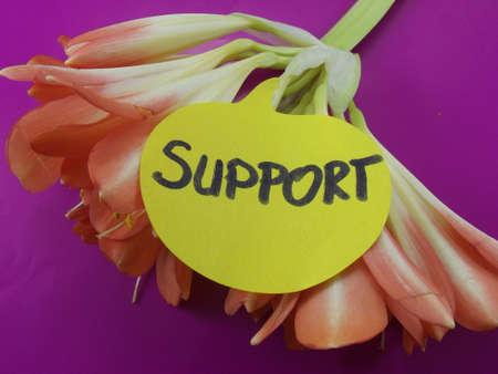 corroborate: word support