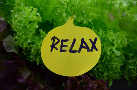 WORD RELAX ON A GREE BACKGROUND photo