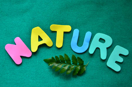 word nature on  green background photo