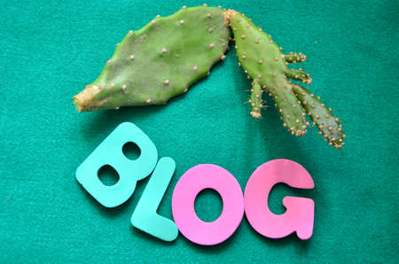 word blog on a green background photo