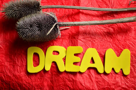 envision: word dream on a red Stock Photo