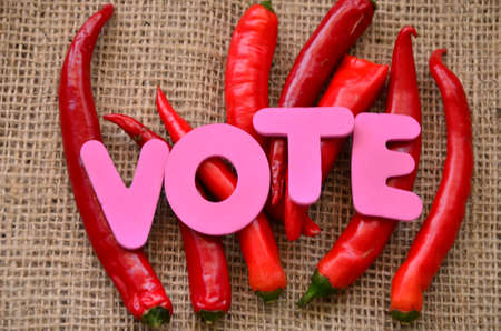 word vote and red chili on a burlap Stock Photo - 20380990