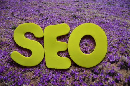 word seo Stock Photo - 20794876