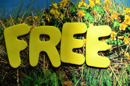 freeware: word free