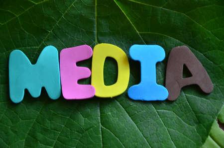 word media photo