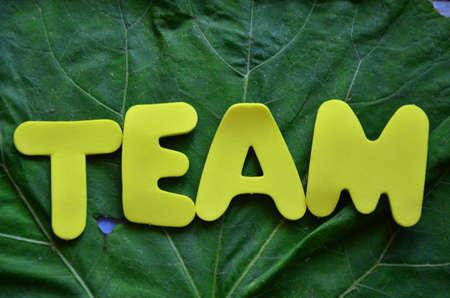 word team photo
