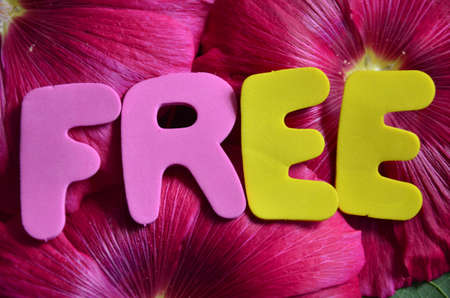 word free photo