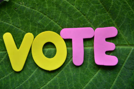 WORD VOTE photo