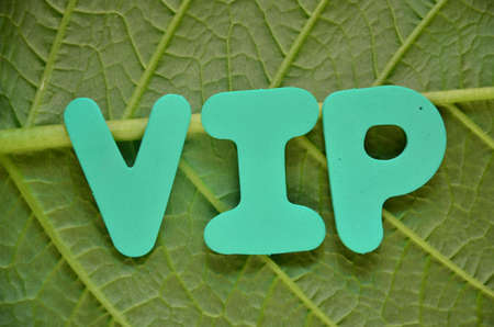 notability: word vip