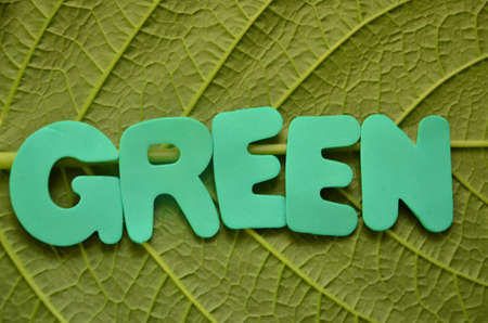 word green photo