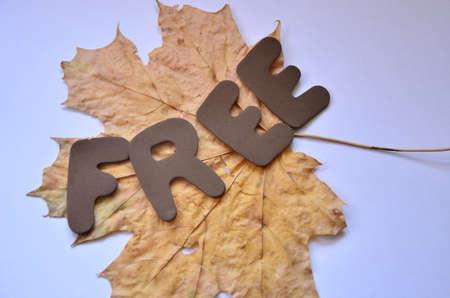 word free Stock Photo - 21227190