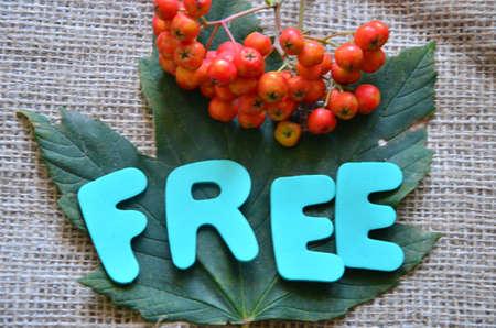 word free Stock Photo - 21321983
