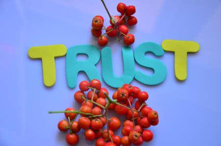 trustworthiness: word trust