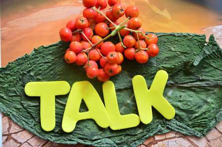 word talk Stock Photo - 21322066