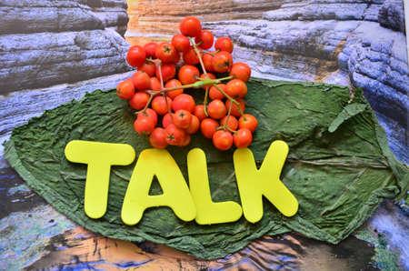 word talk Stock Photo - 21322069