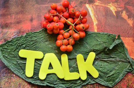 word talk Stock Photo - 21322068