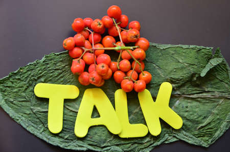 word talk Stock Photo - 21322070