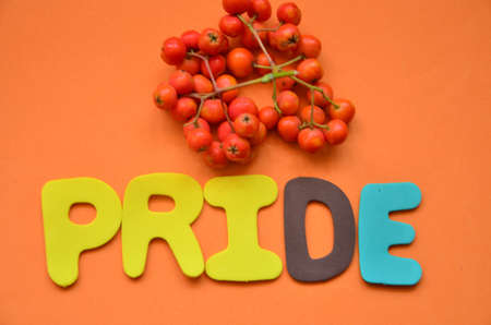 word pride photo