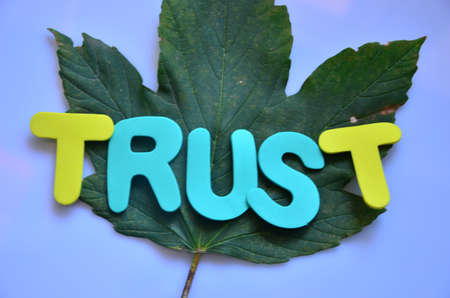 word trust Stock Photo - 21363208