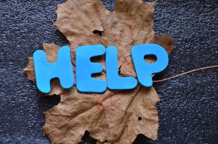 word help photo