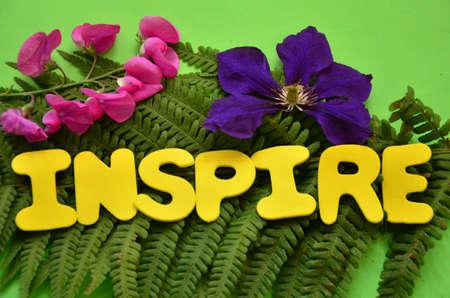 WORD INSPIRE  photo