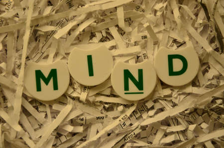 opinionated: WORD MIND