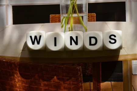 WORD WINDS photo