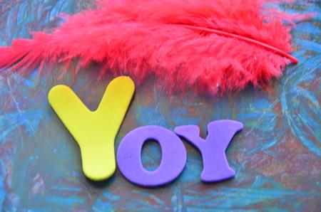 yoy: yoy word
