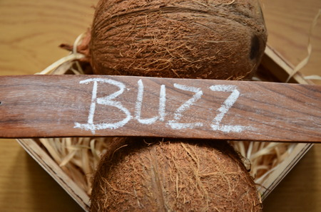 buzz word: buzz word