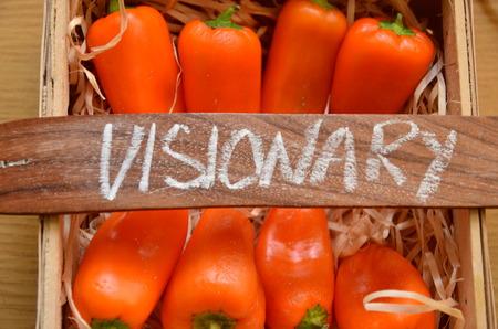 visionary: visionary word