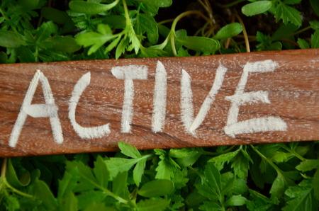 ACTIVE WORD