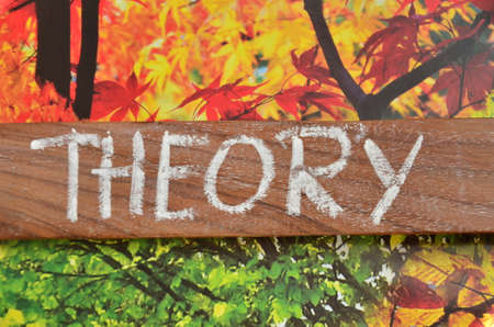 fluctuation: THEORY WORD