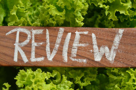 review: WORD REVIEW Stock Photo