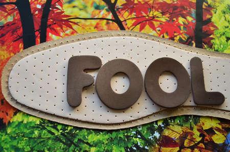 bobo: word fool