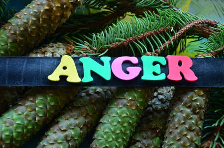 reciprocate: Word anger