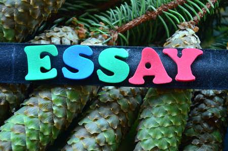 key words art: word essay