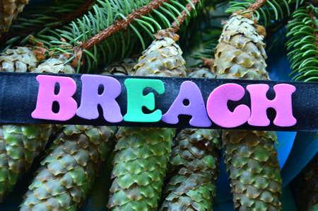 breach: word breach